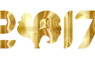 2017, TUDO NOVO DE NOVO!