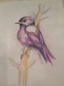 Pássaro - Nídia